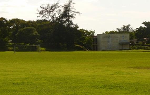 campo1